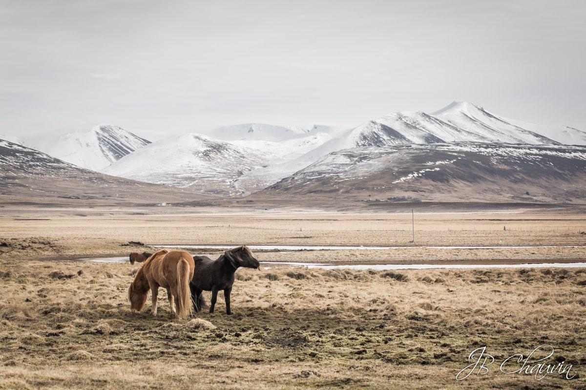 voyage en islande, road trip in iceland, photos islande, jean-baptiste chauvin, photographe IDF