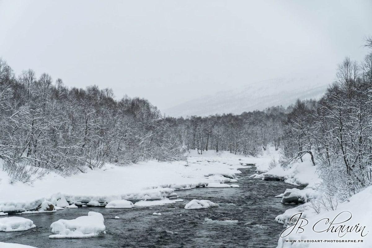 Rencontre avec des loups Norvège